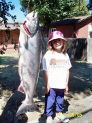 Vieira's Resort Fishing